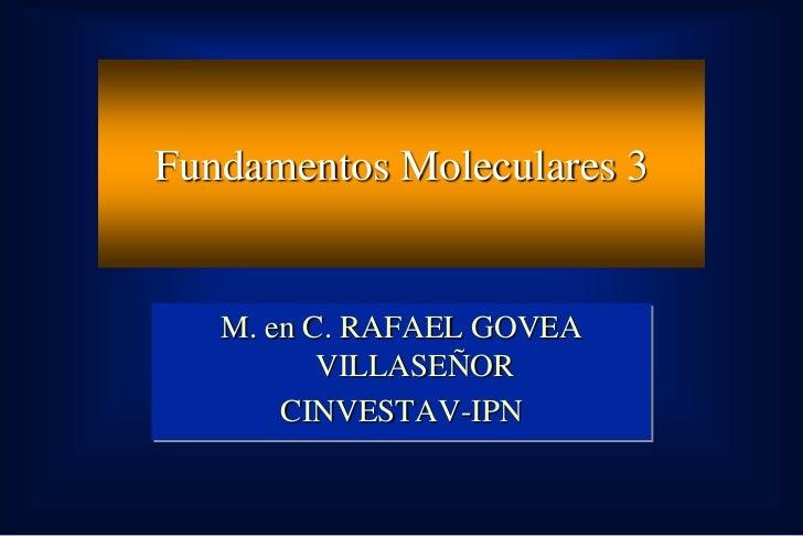 Fundamentos Moleculares 3   M. en C. RAFAEL GOVEA          VILLASEÑOR       CINVESTAV-IPN