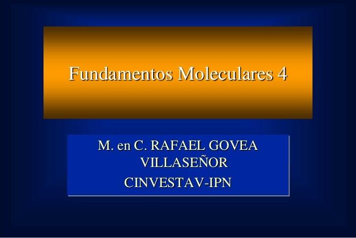 Fundamentos Moleculares 4   M. en C. RAFAEL GOVEA          VILLASEÑOR       CINVESTAV-IPN
