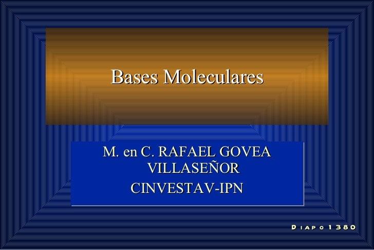 Bases Moleculares M. en C. RAFAEL GOVEA VILLASEÑOR CINVESTAV-IPN Diapo 1380