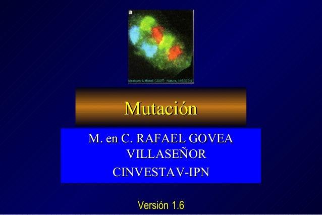 Mutación M. en C. RAFAEL GOVEA M. en C. RAFAEL GOVEA VILLASEÑOR VILLASEÑOR CINVESTAV-IPN CINVESTAV-IPN Versión 1.5
