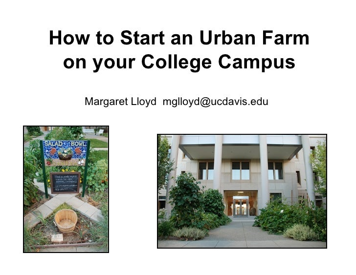 How to Start an Urban Farm  on your College Campus    Margaret Lloyd mglloyd@ucdavis.edu