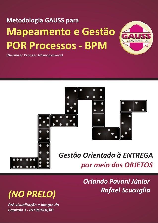 Metodologia GAUSS para  Mapeamento e Gestão  POR Processos - BPM  (Business Process Management)  (NO PRELO)  Gestão Orient...