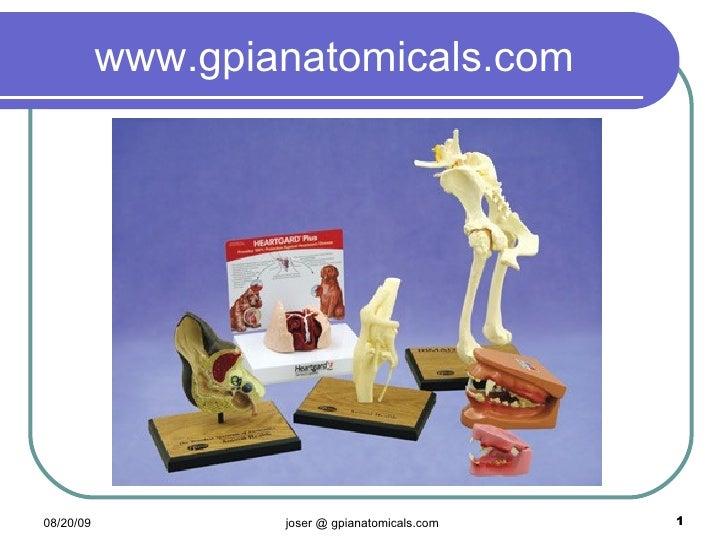 Gpi Veterinary