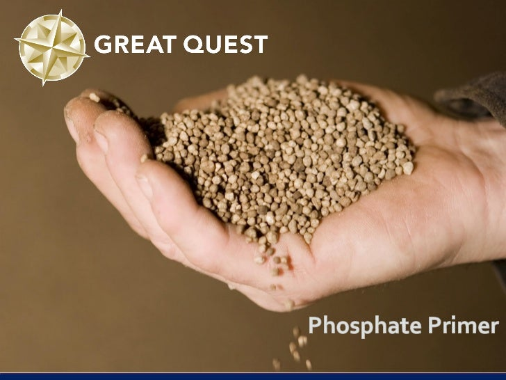 Strategic importance of Phosphorus (P) Essential nutrient for all life forms              Phosphorus-deficient wheat plan...