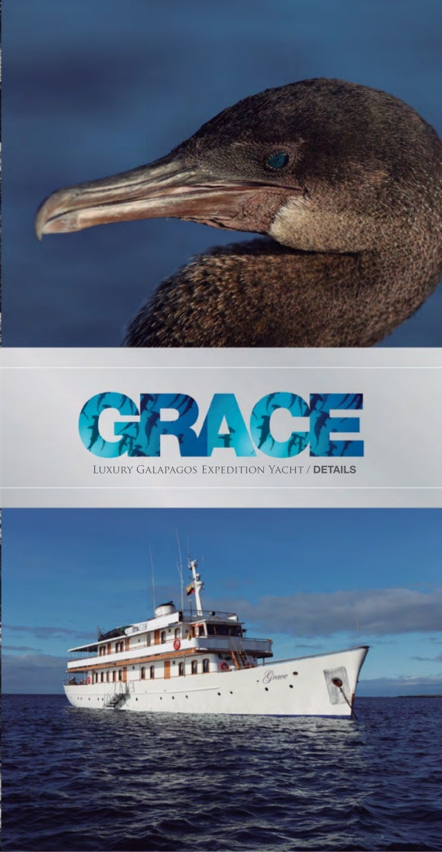 THE GALAPAGOS ISLANDSThe Galapagos Archipelago is a cluster of some13 volcanic islands and associated islets and rocksloca...