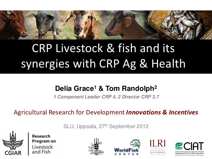 CRP Livestock & fish and its  synergies with CRP Ag & Health             Delia Grace1 & Tom Randolph2             1 Compon...