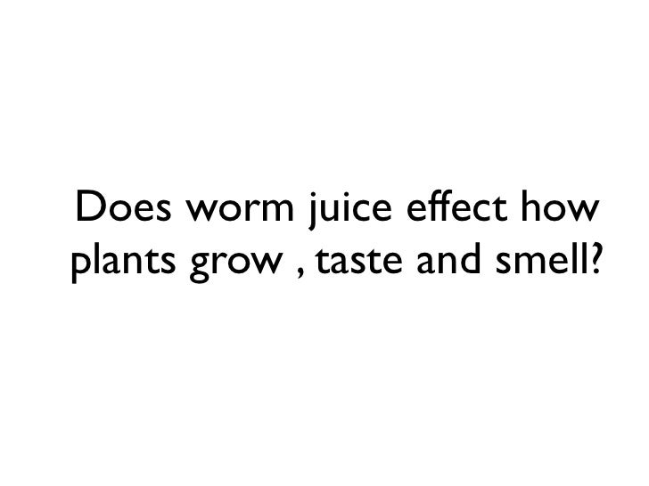 Does worm juice effect howplants grow , taste and smell?