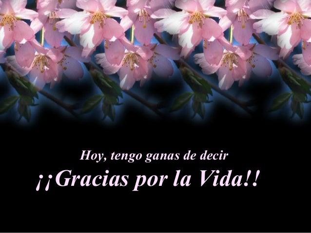 Hoy, tengo ganas de decir ¡¡Gracias por la Vida!!