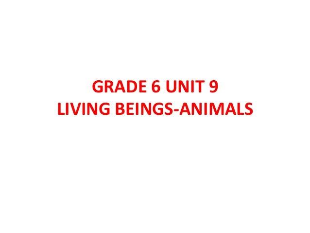 Grade 6 unit 9 mg