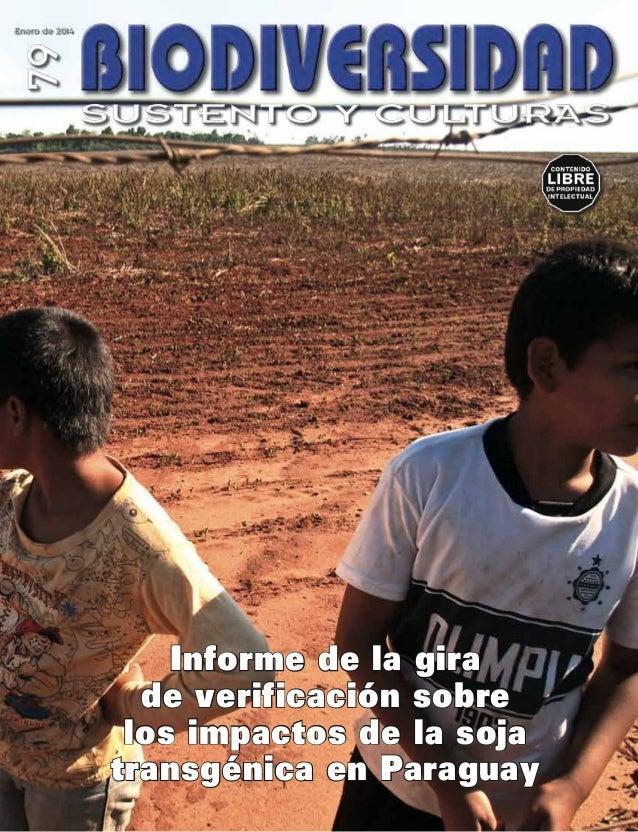 Informe de la gira de verificación sobre los impactos de la soja transgénica en Paraguay
