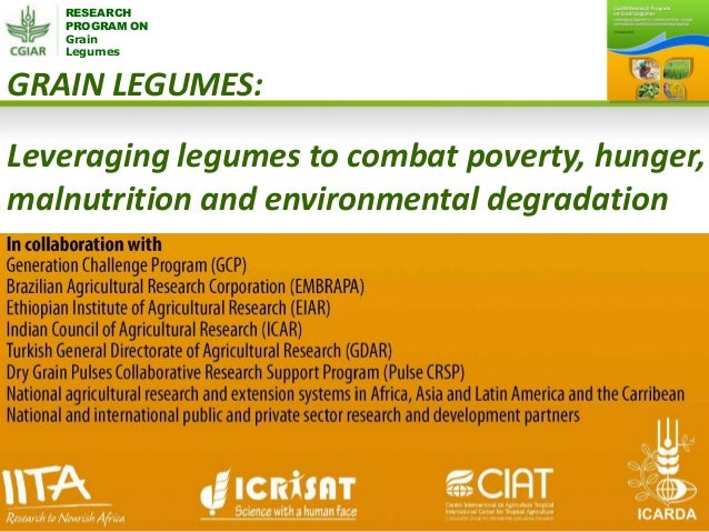 RESEARCH PROGRAM ON Grain Legumes GRAIN LEGUMES: Leveraging legumes to combat poverty, hunger, malnutrition and environmen...