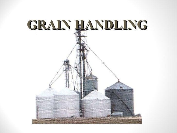 Grain presentation 2010b