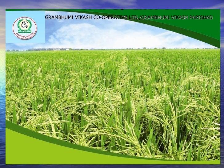 GRAMBHUMI VIKASH CO-OPERATIVE LTD./GRAMBHUMI VIKASH PARISHAD    • GRAMBHUMI VIKASH CO-OPERATIVE