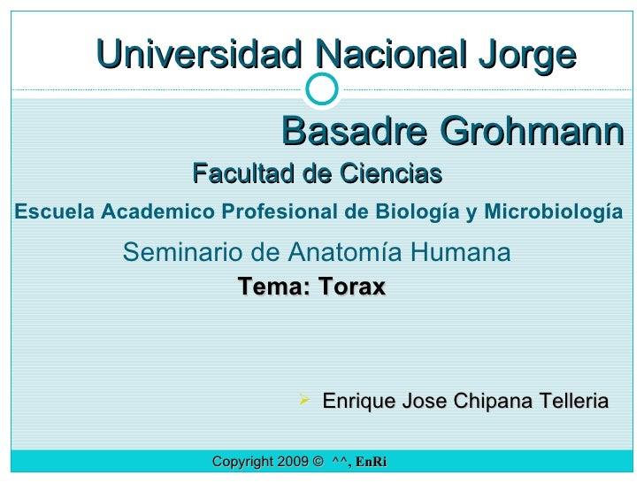 Universidad Nacional Jorge  Basadre Grohmann Facultad de Ciencias Seminario de Anatomía Humana Tema: Torax <ul><li>Enrique...
