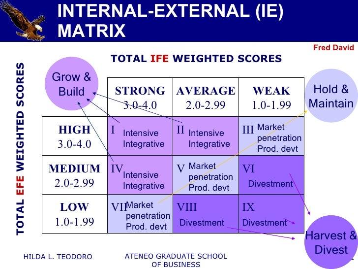 Internal external ie matrix | Term paper Help znessaytibr.webv.us