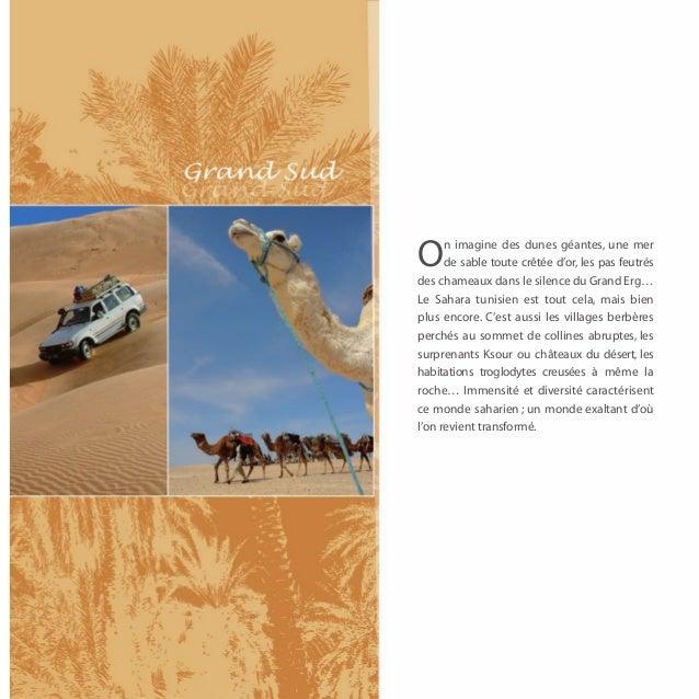 n imagine des dunes géantes, une merO     de sable toute crêtée d'or, les pas feutrésdes chameaux dans le silence du Grand...