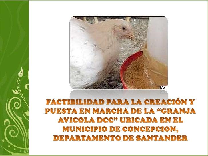 Granja avicola malaga