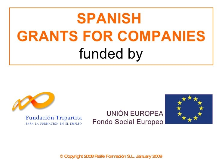 SPANISH  GRANTS FOR COMPANIES funded by © Copyright 2008 Reife Formación S.L. January 2009