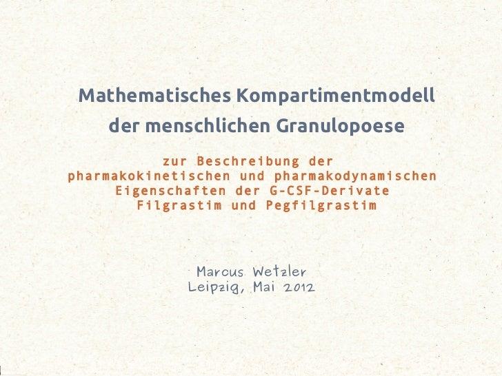 Mathematisches Kompartimentmodell                     der menschlichen Granulopoese                      zur Beschreibung ...