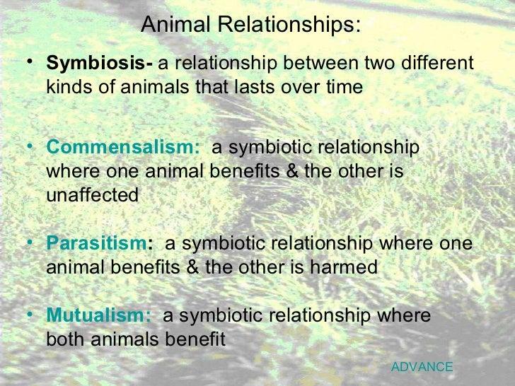 meaning of parasitism relationship in grasslands