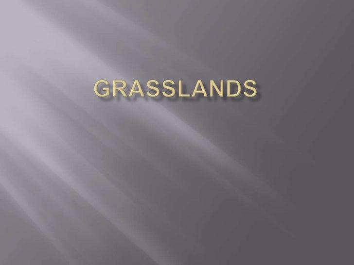 Grasslands bernard