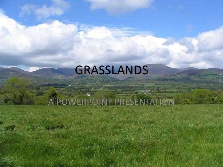 GRASSLANDSA POWERPOINT PRESENTATION