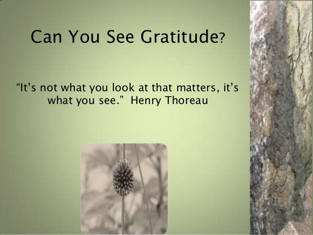 """Can You See Gratitude? """"It's not what you look at that matters, it's what you see."""" Henry Thoreau  C.N. John"""