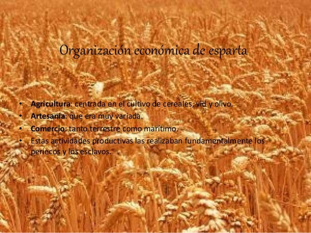 Grecia Organizacion Economica Organización Económica de
