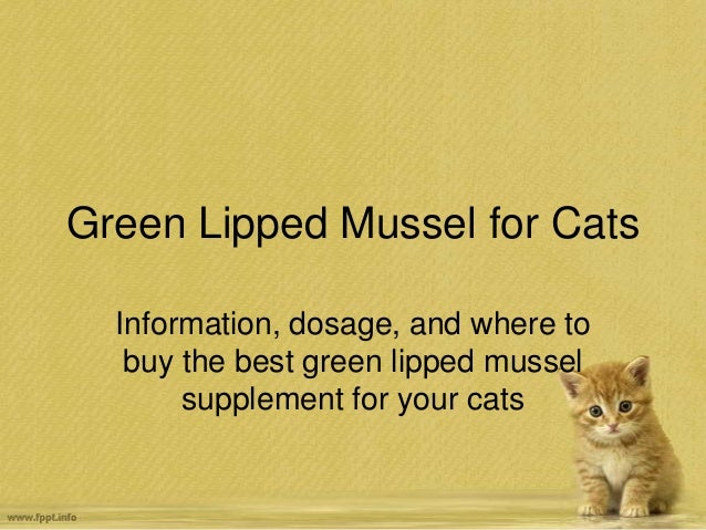 Green Lipped Mussel for Cats Information, dosage, and where to buy the best green lipped mussel supplement for your cats