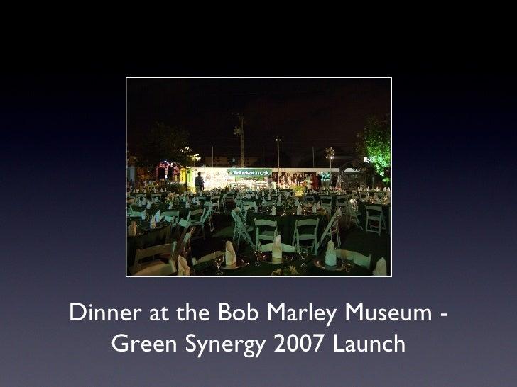 Green Synergy 2007