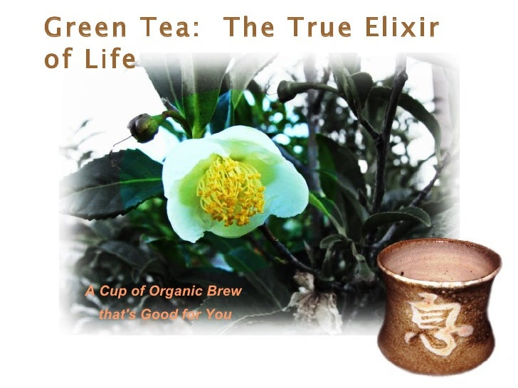 Green Tea:  The True Elixir of Life A Cup of Organic Brew  that's Good for You