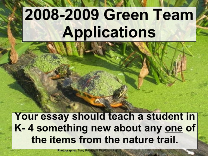 2008-2009 Green Team Applications Your essay should teach a student in K- 4 something new about any  one  of the items fro...