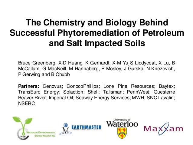 The Chemistry and Biology BehindSuccessful Phytoremediation of Petroleum        and Salt Impacted Soils Bruce Greenberg, X...