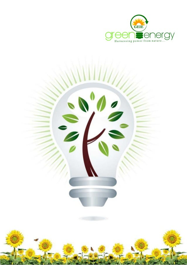 "Company  Profile  Established in the year 2002, at Delhi Cantonment (Delhi, India), we, ""Green Energy India Enterprises"", ..."