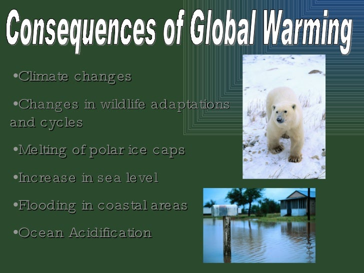 Global Warming Essays