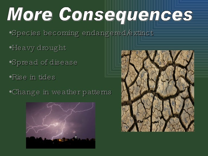 greenhouse effects essay Greenhouse gases essay examples  an analysis of the greenhouse effect of an increase in the atmospheric temperature caused by increasing amounts of greenhouse gases.