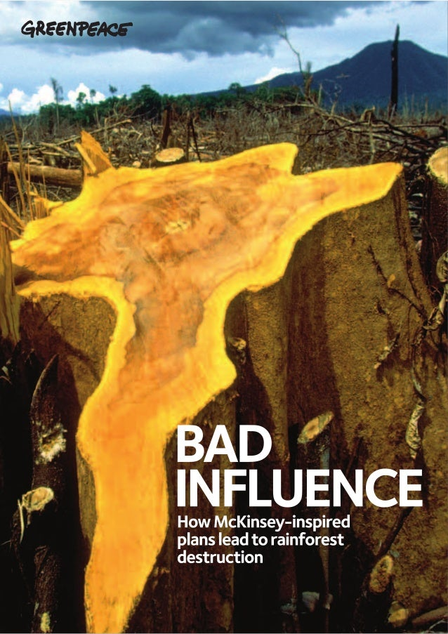 Greenpeace bad influence_report_lowres