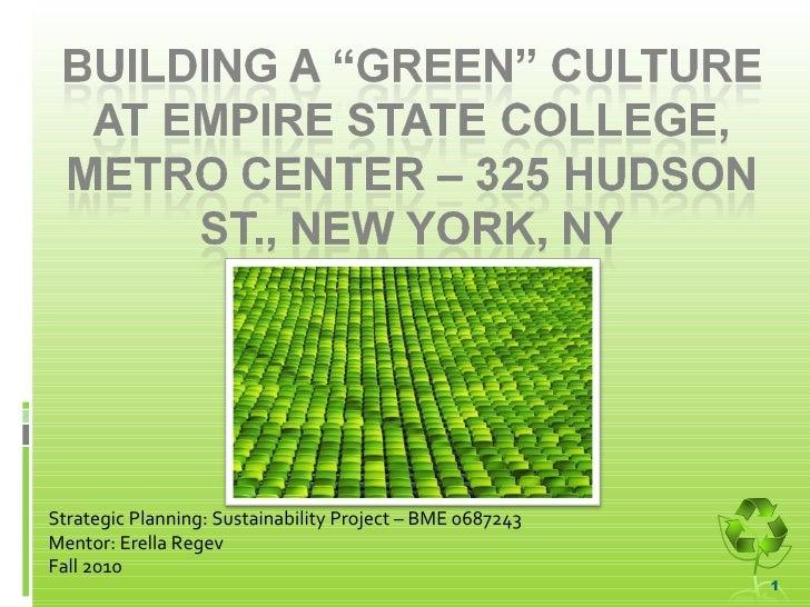 Strategic Planning: Sustainability Project – BME 0687243  Mentor: Erella Regev Fall 2010