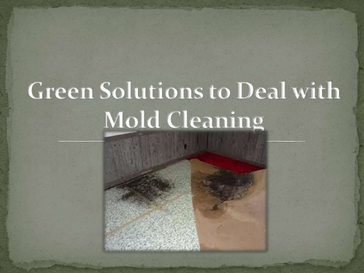 Green solutions to deal with mold cleaning