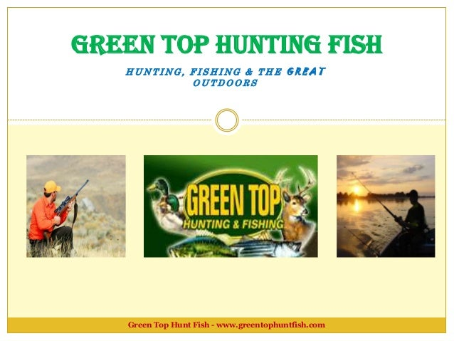 compound bow acessories by green top hunting fish