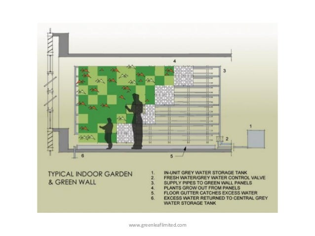 Green Wall Or Vertical Garden