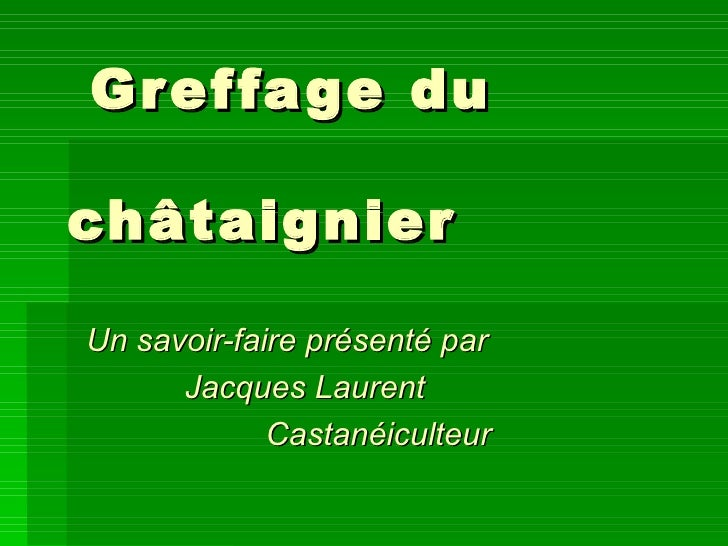 Greffage du   châtaignier Un savoir-faire présenté par Jacques Laurent Castanéiculteur