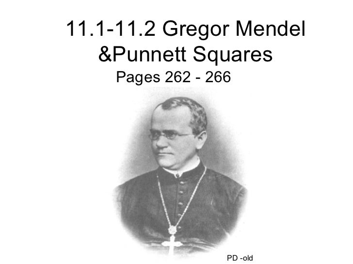 11.1-11.2 Gregor Mendel &Punnett Squares Pages 262 - 266 PD -old