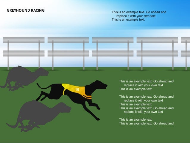 GREYHOUND RACING This is an example text. Go ahead and replace it with your own text This is an example text. This is an e...