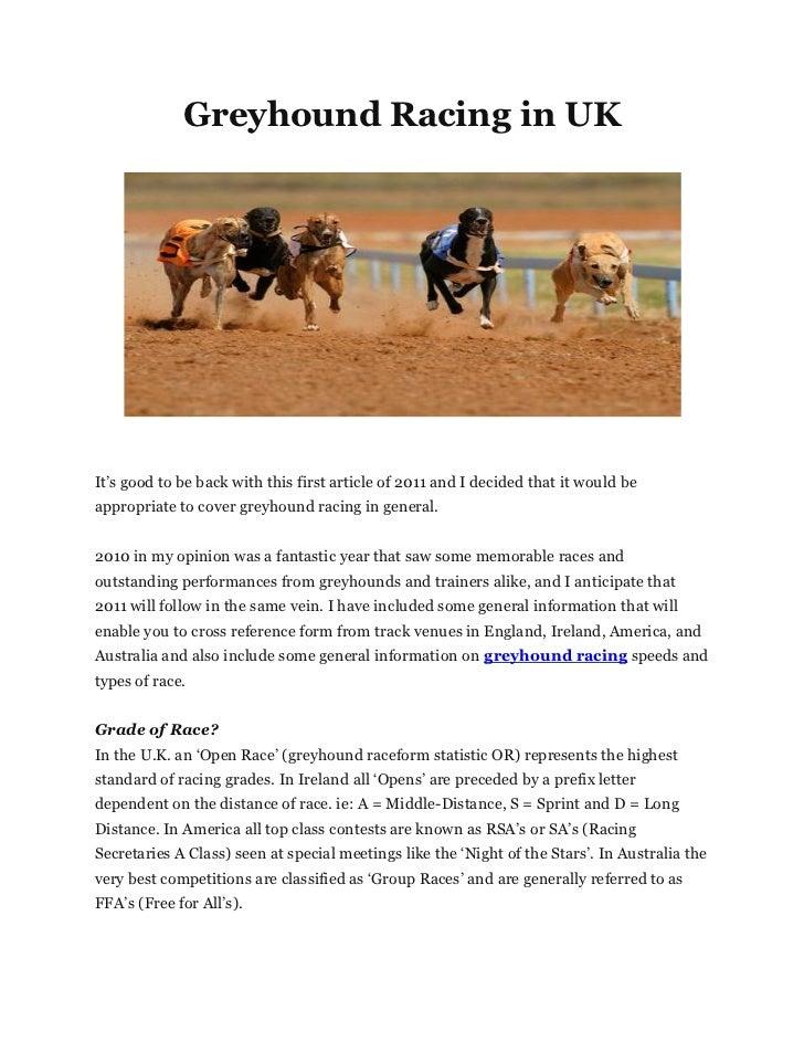 Greyhound racing in uk