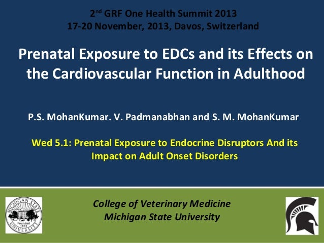 2nd GRF One Health Summit 2013 17-20 November, 2013, Davos, Switzerland  Prenatal Exposure to EDCs and its Effects on the ...