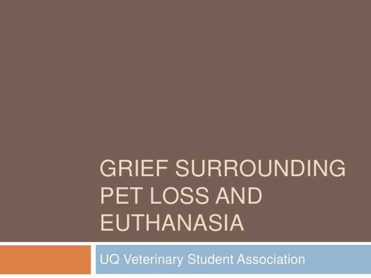 Grief surrounding pet loss and euthanasia by Grace Harwood