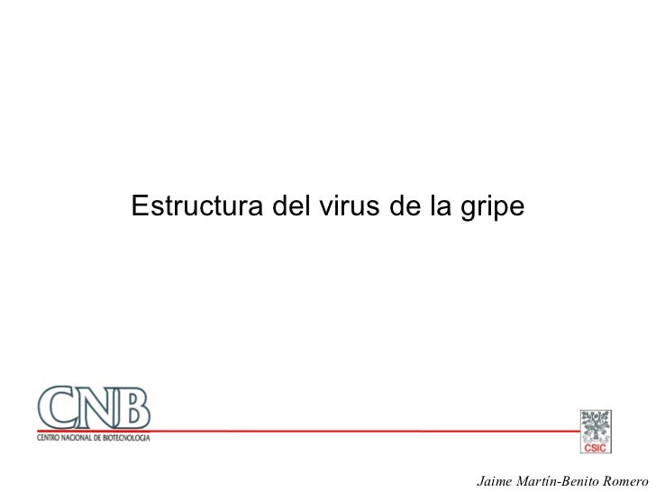 Estructura del virus de la gripe                                 Jaime Martín-Benito Romero