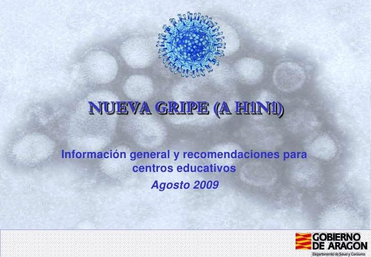 NUEVA GRIPE (A H1N1)<br />Información general y recomendaciones para centros educativos<br />Agosto 2009<br />