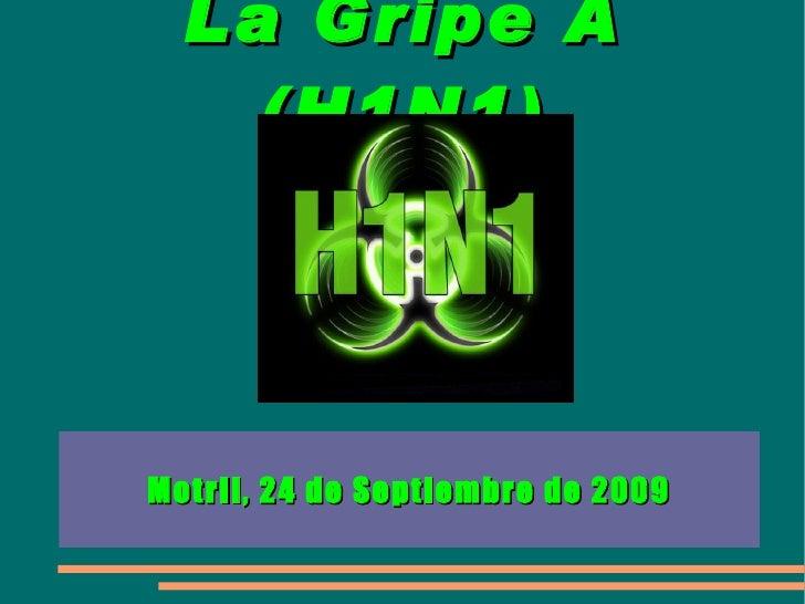 La Gripe A (H1N1) Motril, 24 de Septiembre de 2009
